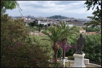 2011_Algerie-8