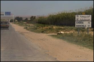 2011_Algerie-886