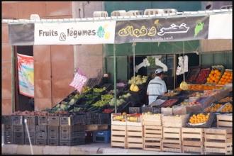 2011_Algerie-989