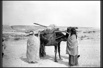 276-Algerie-BirElAter-1957