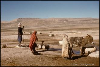 291-Algerie-BirElAter-1958