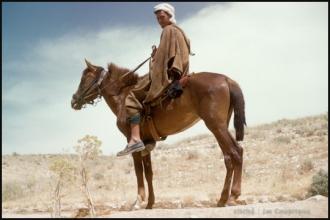 296-Algerie-BirElAter-1958