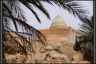333-Algerie-Ferkane-2011