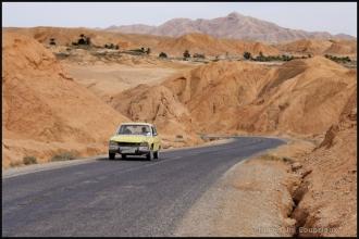 334-Algerie-Ferkane-2011