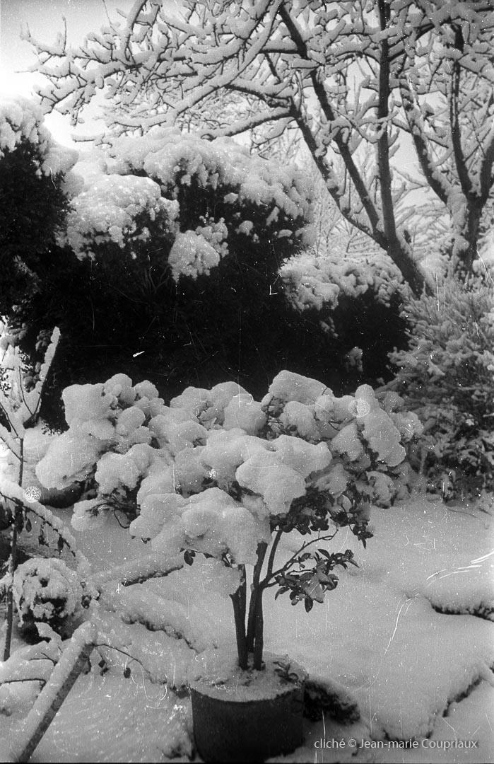 1962_nb-31