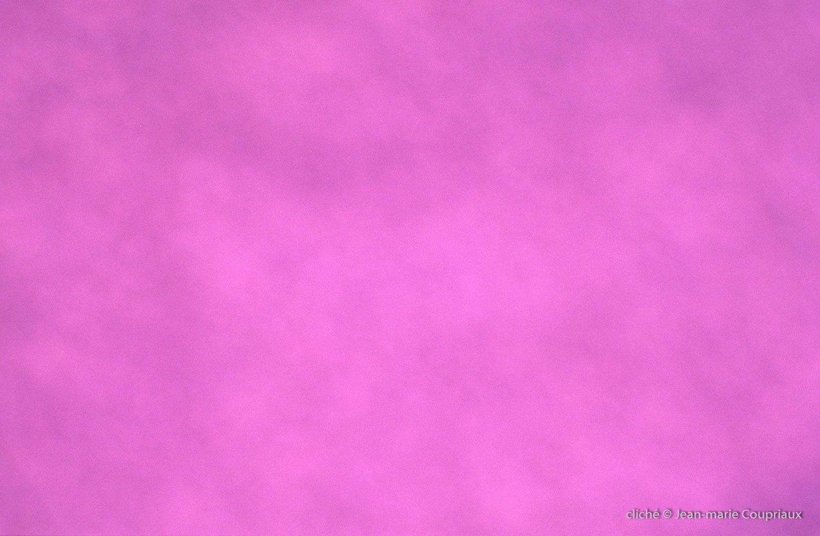 Color-15
