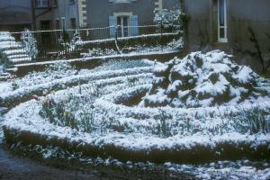 1979_jardin-Menoux_-13