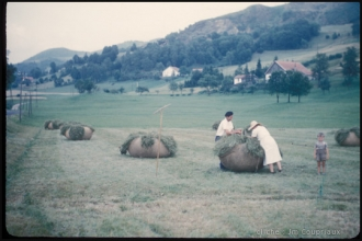 1960-Vosges-foins-1.jpg