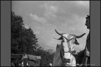 1960_JAC-4.jpg