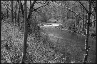 1960_nb-26.jpg