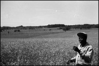 1960_stagiaire-FrNgoudou-3.jpg