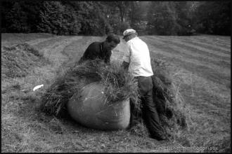 1962_agri-foins-1.jpg