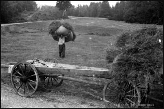 1962_agri-foins-4.jpg