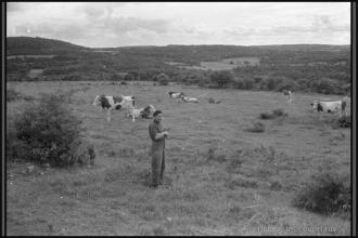 1962_nb-03.jpg