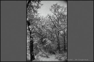 1962_nb-22.jpg