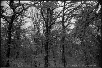 1962_nb-23.jpg