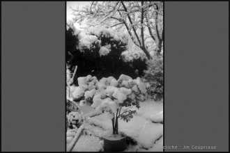 1962_nb-31.jpg
