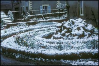 1979_jardin-Menoux_-13.jpg