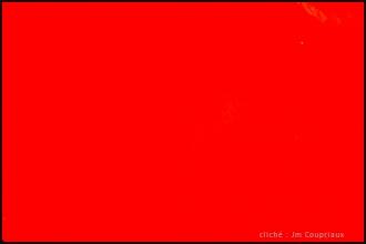 Color-23.jpg