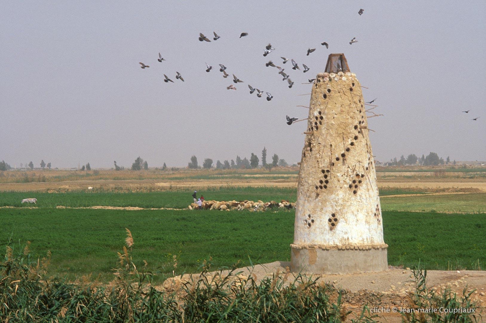 2006_Egypte-203