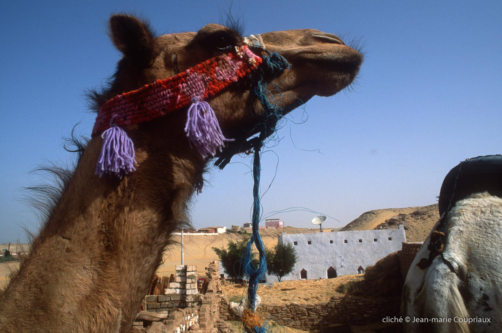 2006_Egypte-260