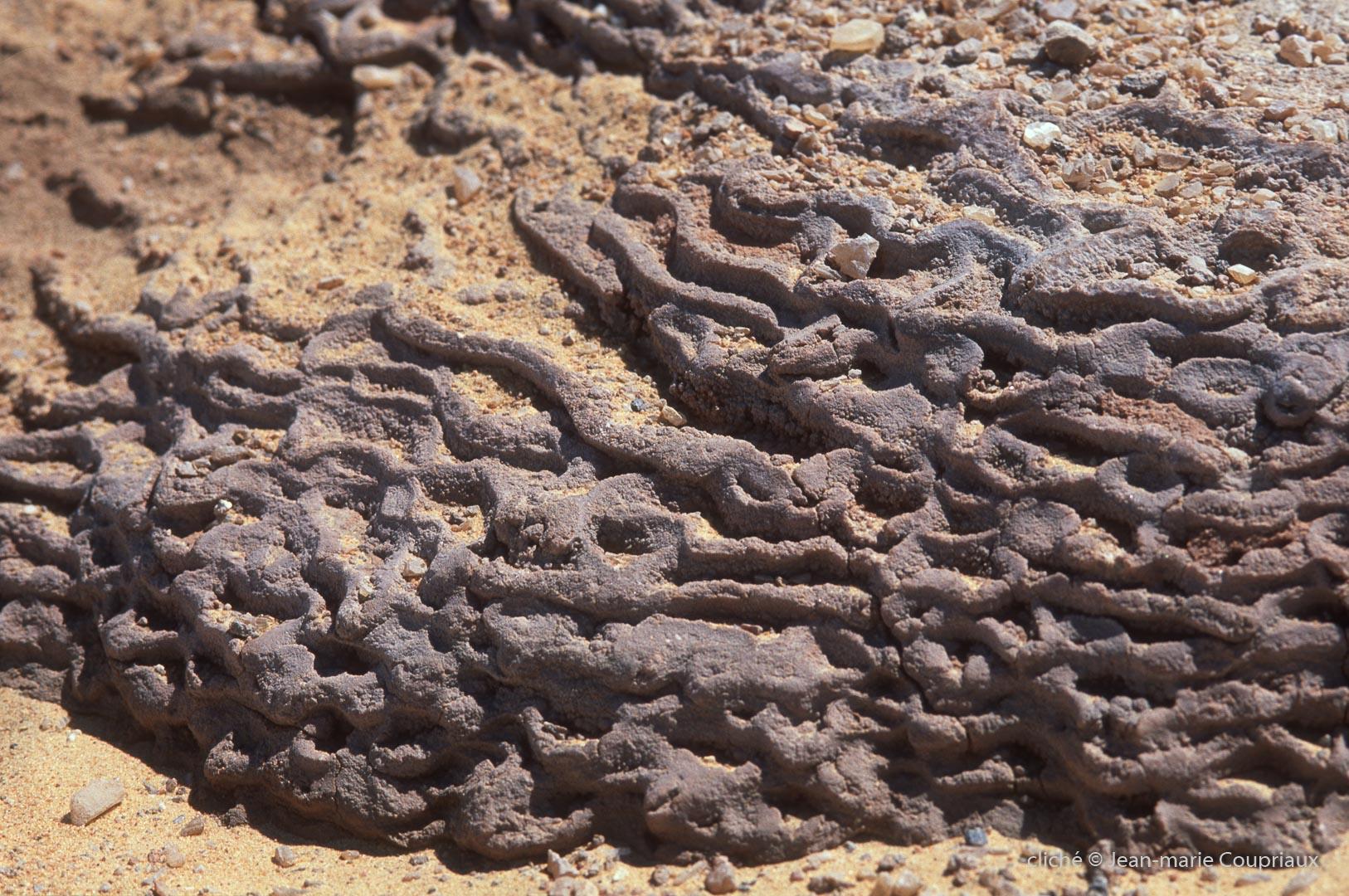2006_Egypte-67