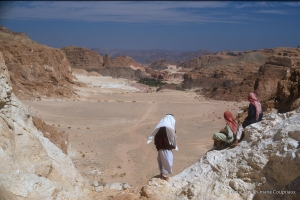 589-Sinai-Jerus