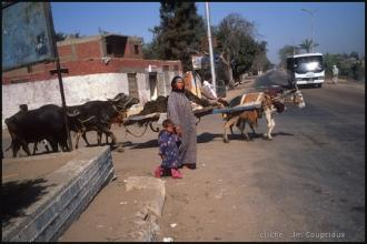 2006_Egypte-411