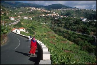 2005_Madere-113.jpg