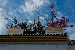 2013_Andalousie-177