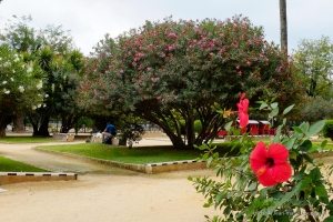 2013_Andalousie-503