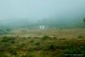 2013_Andalousie-580