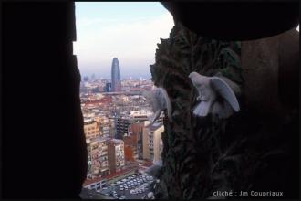 2005_Barcelone-Sagrada-21.jpg