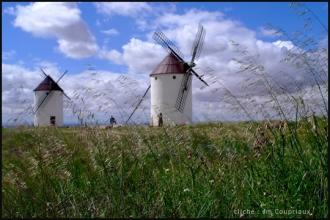 2007_LaMancha-119.jpg