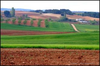 2007_LaMancha-4.jpg