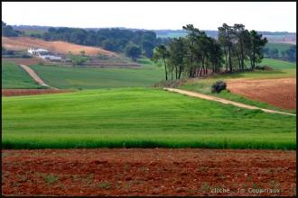 2007_LaMancha-7.jpg