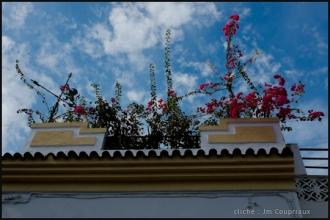 2013_Andalousie-177.jpg