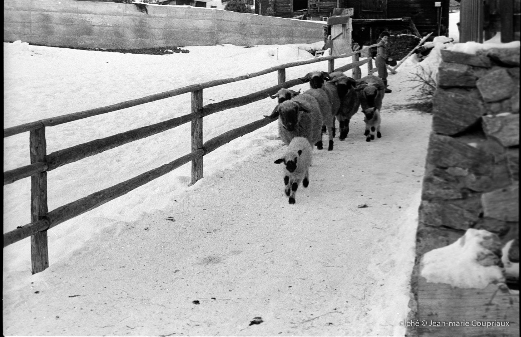 1978_Zermatt-nb-8