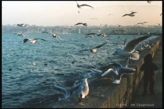 Genève_1981-17.jpg