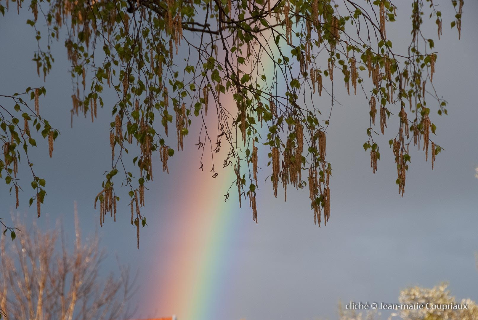 arc_en_ciel-2012-1.jpg