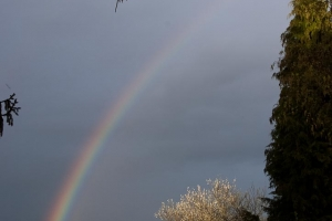 arc_en_ciel-2012-3