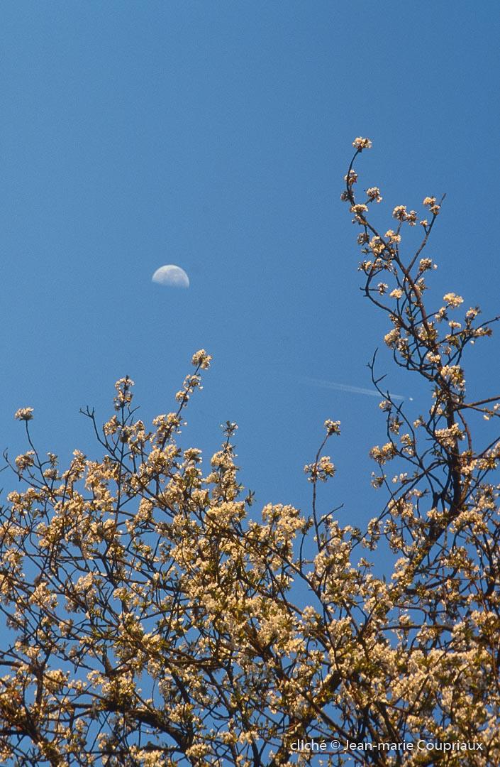 ciel-10-1.jpg