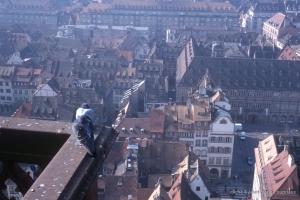 Stasbourg_1998_26