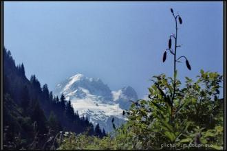 Alpes_1996-99