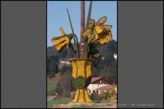 Vosges-12