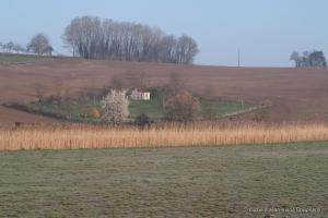Amance_2014-paysage-1