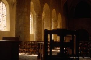Faverney_1-2007-basilique-14