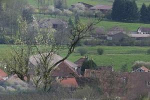 Faverney_1-2008-43
