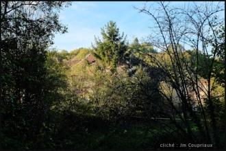 Cherlieu-2014-4.jpg