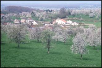 Fougerolles_076.jpg